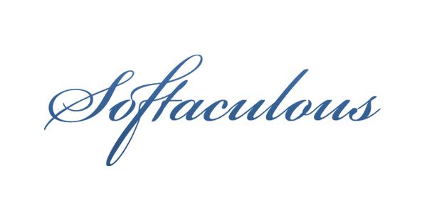 Anwendungen leicht gemanaged: Softaculous jetzt auch für Plesk-Server