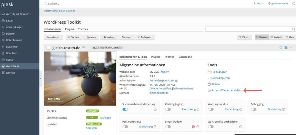 Plesk WordPress Backup Toolkit