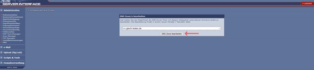 DNS-Zone anpassen - SI DNS Button